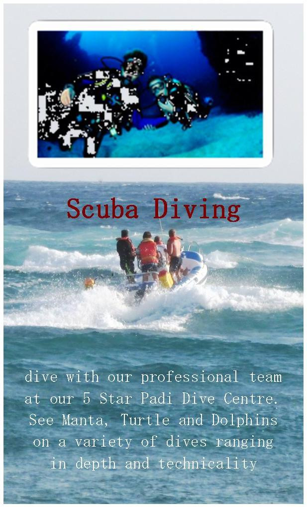 Mozambique Scuba Diving